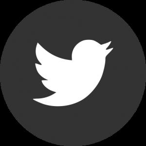icone twitter